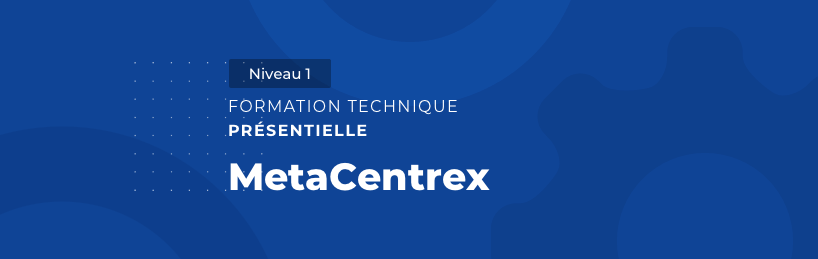 Formation MetaCentrex Niveau 1 - OpenIP